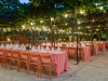 weddings-in-malta-olive-groves-11