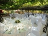 weddings-in-malta-olive-groves-15