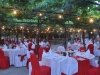 weddings-in-malta-olive-groves-6