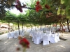weddings-in-malta-olive-groves-9